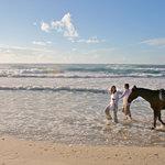 Miles of pristine beach to ride