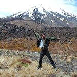 Easy walks in and around Tongariro and Whanganui National Parks