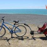 Cruiser bike and tag-a-long