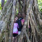 Standing inside shell of Parasite Tree roots