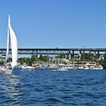 On the water in Lake Union