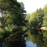Boulognerskogen