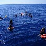Snorkeling Plemmirio.