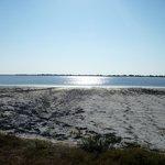 Les plages du marais