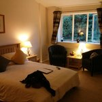 Photo de The Meadows Bed and Breakfast Lyndhurst