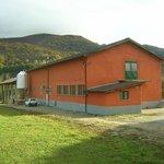 Azienda Agricola Brignè