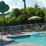 Crystal Palms Resort pool area