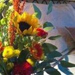 #Fallflowers