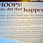 Display Environmental Changes-Natural History-Morro Bay