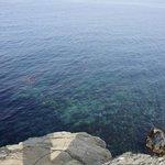 透明度の高い海