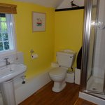 The Maldon room shower room