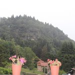 Photo de Hotel Il Nibbio