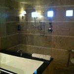 Huge Bathroom and Shower