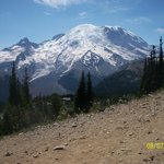 Mt Rainier from the National Park Center