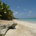 Sandy Cocal Beach Little Corn Beach and Bungalow