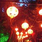 chinese lantons