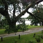 veiw over the bayou