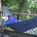 Lovely hammocks