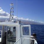 Vu du bateau sur l'île