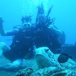 Turtle and us diving on Sea Tiger off Waikiki