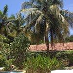 Hotel Bula Bula grounds/pool