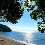 Canibad Philippines