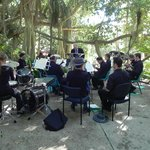 Music under the Banyan trees