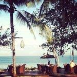 ресторан для завтраков и ужинов практически на пляже (garden)