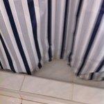 moldy curtain