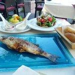 рыба дня и салат