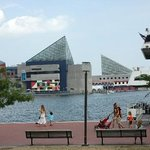 Foto de Sleep Inn & Suites Downtown Inner Harbor