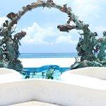 Reefs arc