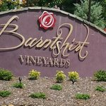 Burntshirt Vineyards Entrance Gate