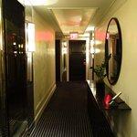 Hallway, 5th Floor