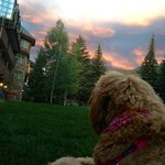 Edie enjoying the sunset outside our room