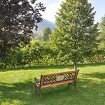 restful setting