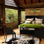 Photo de Sanbona Game Reserve - Gondwana Lodge