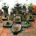 la fontanella nel cortiel