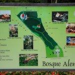 Bosque Alemão - Mapa