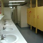 Ladies bathroom has sinks, toilet stalls, and coin showers.