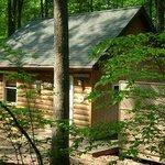Maple Tree Cabin