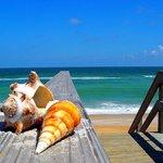 Photo of Ocean Sands Beach Inn