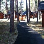 Path to romance Cabins