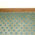 carpet.....mold also?