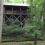 Cabin # 4-rear view