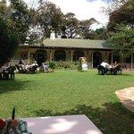 Garden - Karen Blixen Coffee Garden