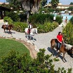 Horse Country Resort, Congress and Spa Foto