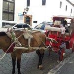 paseo en carruaje por el casco colonial