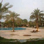 Pool side villa view