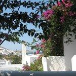 Bugnvillea garden and side sea view